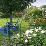 zahradní pletivo okrasné